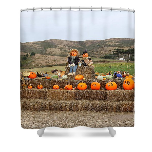Halloween Pumpkin Patch 7D8478 Shower Curtain by Wingsdomain Art and Photography