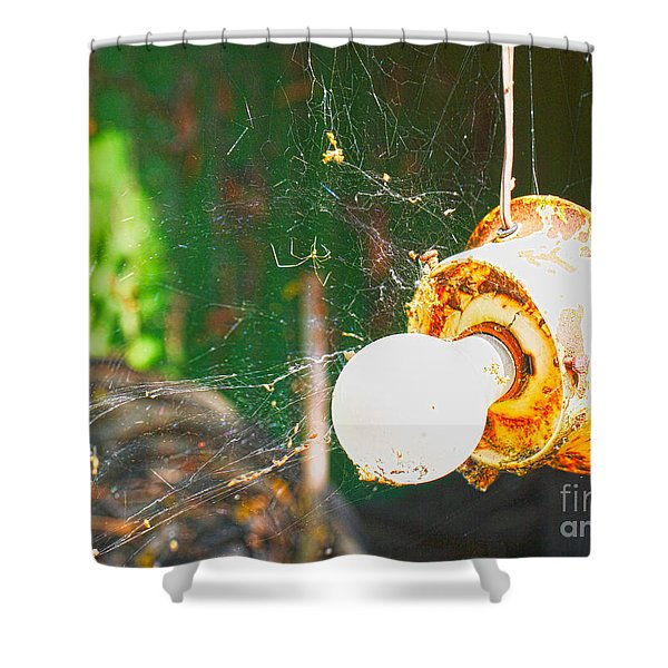 Hanging by a Web Shower Curtain by Cheryl Young