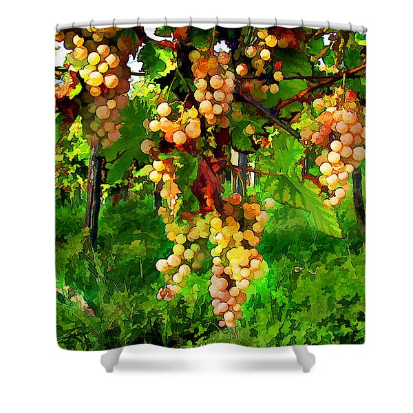 Hanging Grapes on the Vine Shower Curtain by Elaine Plesser