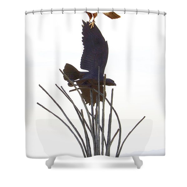 Hawk on statue Shower Curtain by Rebecca Margraf