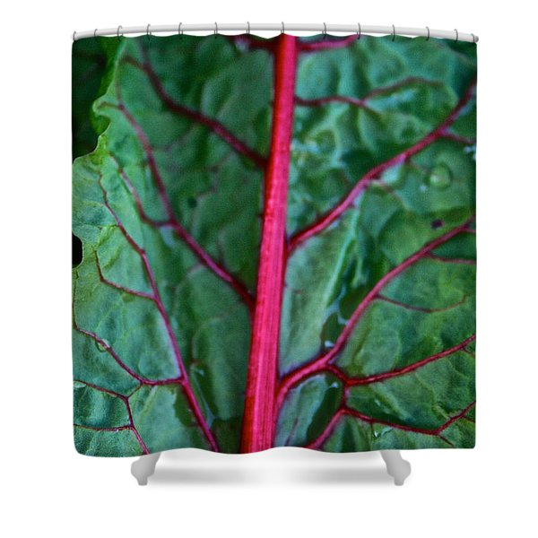 Heart Wise Shower Curtain by Susan Herber