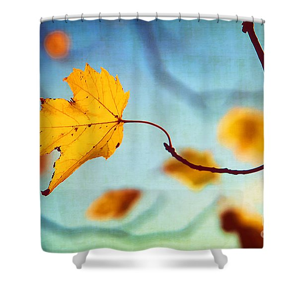 Holding On Shower Curtain by Darren Fisher