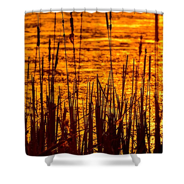 Horicon Cattail Marsh Wisconsin Shower Curtain by Steve Gadomski