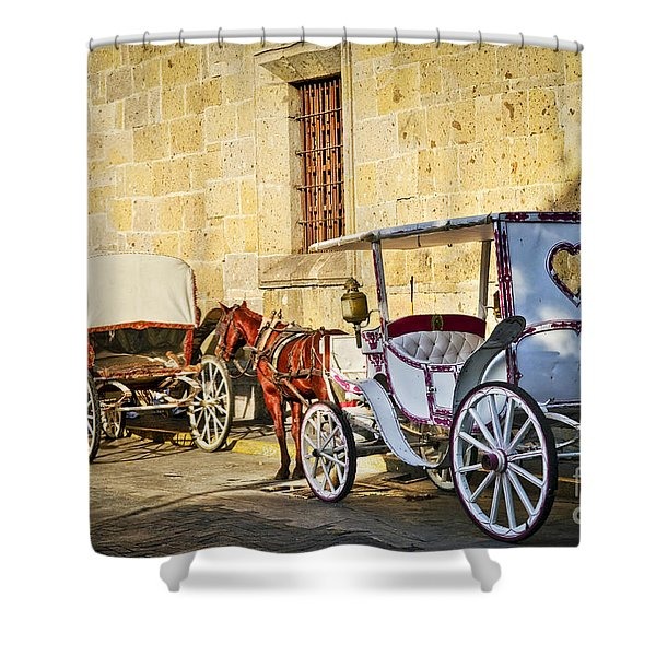 Horse drawn carriages in Guadalajara Shower Curtain by Elena Elisseeva