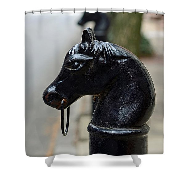 Horses on Delancey Street Shower Curtain by Lisa  Phillips
