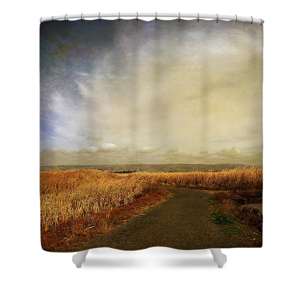 If I Could See Into The Future Shower Curtain by Laurie Search