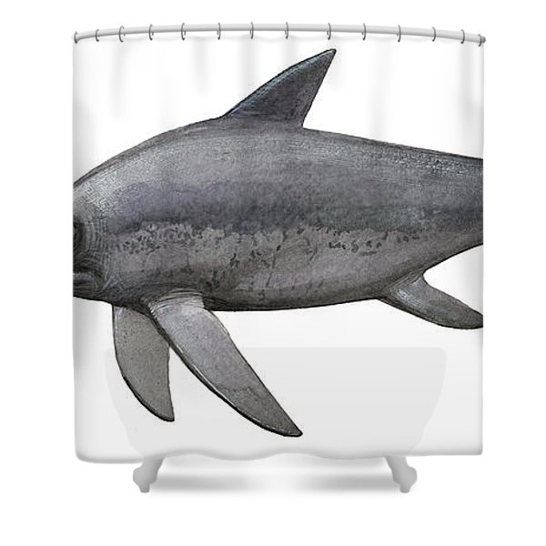 Illustration Of An Eurhinosaurus Shower Curtain by Sergey Krasovskiy