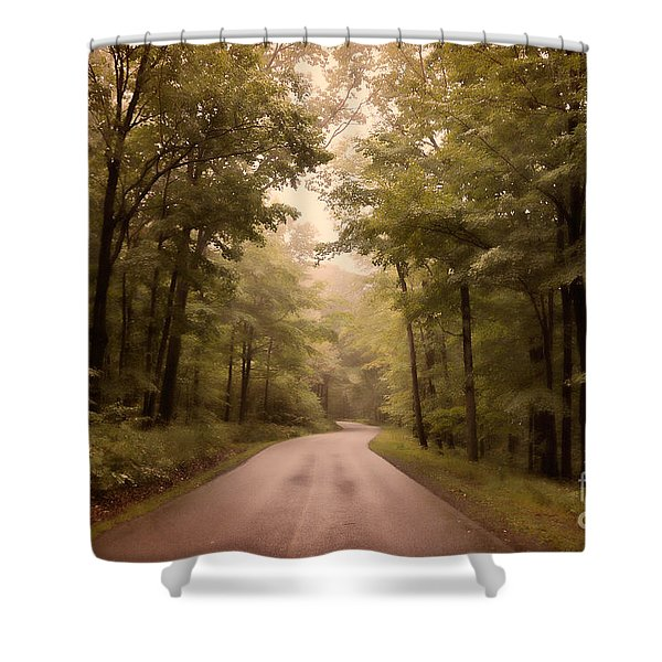 Into The Mists Shower Curtain by Lois Bryan