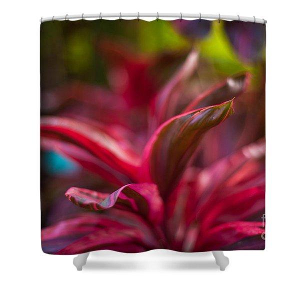 Island Bromeliad Shower Curtain by Mike Reid