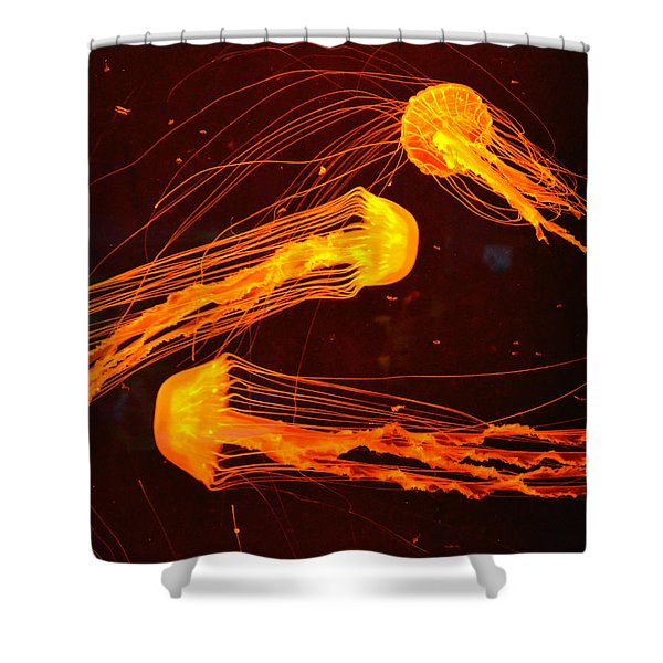 Jellyfish Abstract Shower Curtain by Sandi OReilly