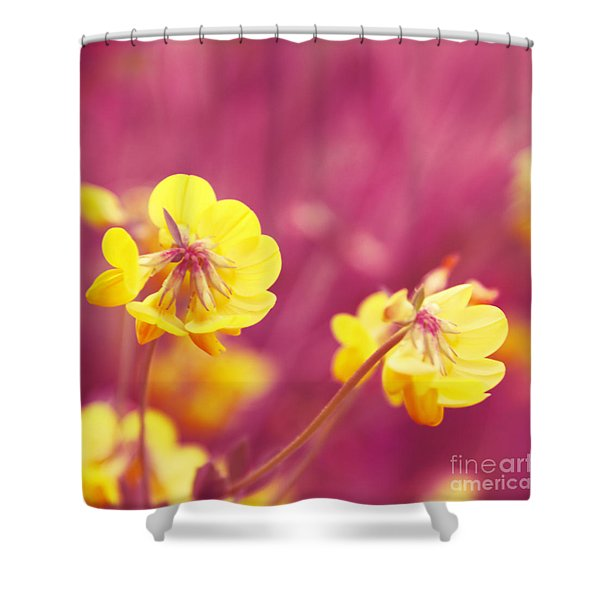 Joyfulness Shower Curtain by Aimelle