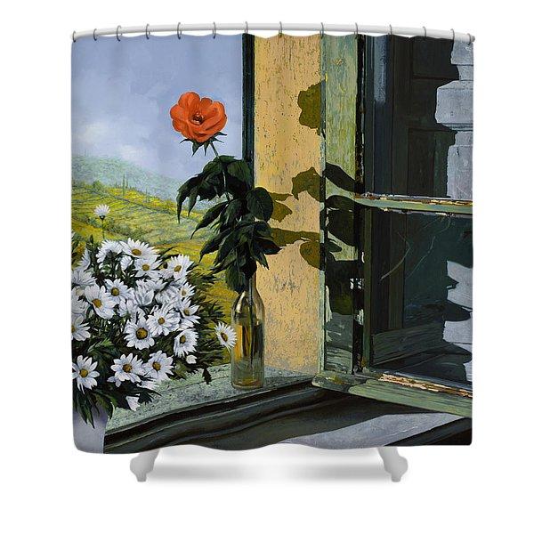 la rosa alla finestra Shower Curtain by Guido Borelli