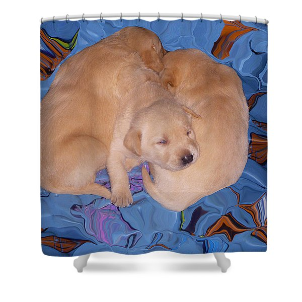 Lab Pups 2 Shower Curtain by Aimee L Maher Photography and Art