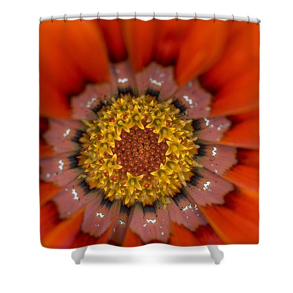 Lake Of The Woods, Ontario, Canada Shower Curtain by Keith Levit