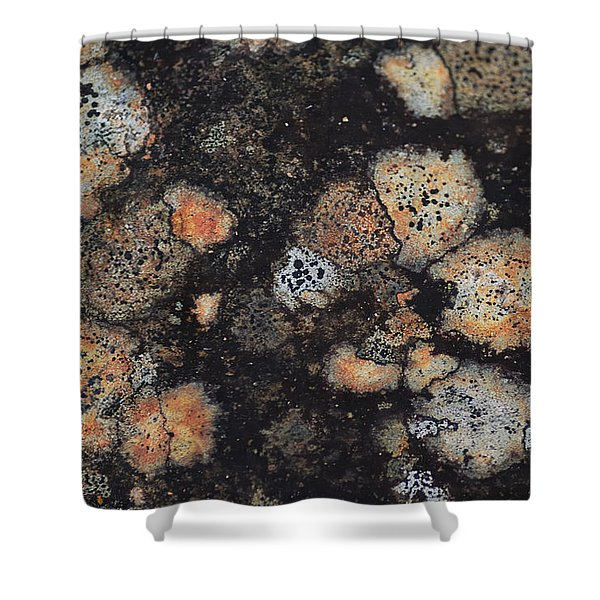 Lichen Abstract Shower Curtain by Susan Capuano