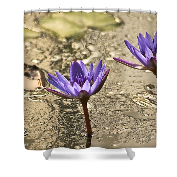 Lily Twins Shower Curtain by Carolyn Marshall
