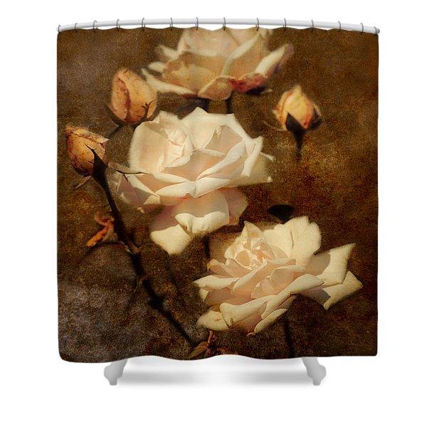 Love Letter II Shower Curtain by Jai Johnson