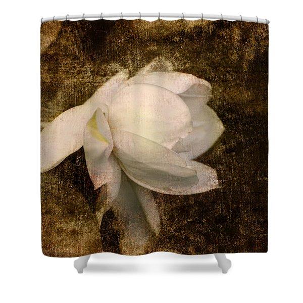 Love Letter VIII Cape Jasmine Gardenia Shower Curtain by Jai Johnson