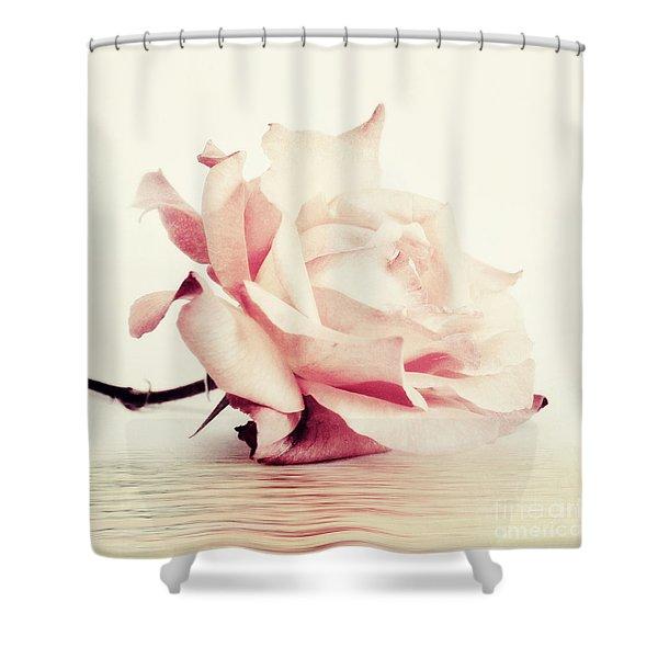 lucid Shower Curtain by Priska Wettstein