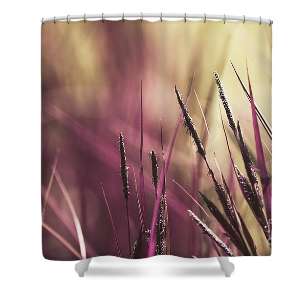 Luminis 02 - S11a Shower Curtain by Variance Collections