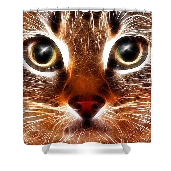 Meow Shower Curtain by Stephen Younts