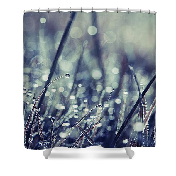 Mondo 02 - s03b Shower Curtain by Variance Collections