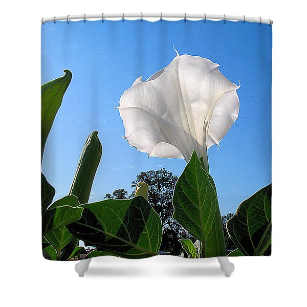 Moonflower Rising Shower Curtain by Joyce Dickens