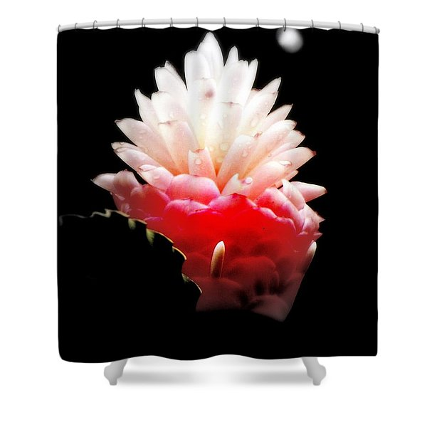 Moonlight Glow Shower Curtain by KAREN WILES