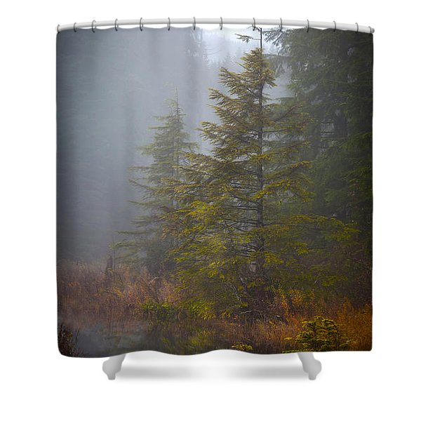 Morning Fall Colors Shower Curtain by Mike Reid