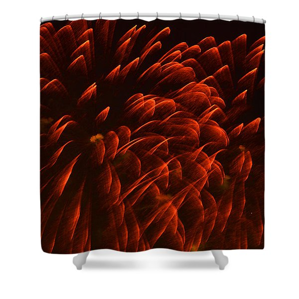 Mums Absract Shower Curtain by Sandi OReilly