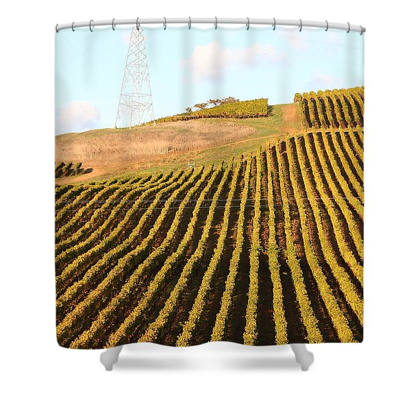 Napa Valley Vineyard . 7D9065 Shower Curtain by Wingsdomain Art and Photography