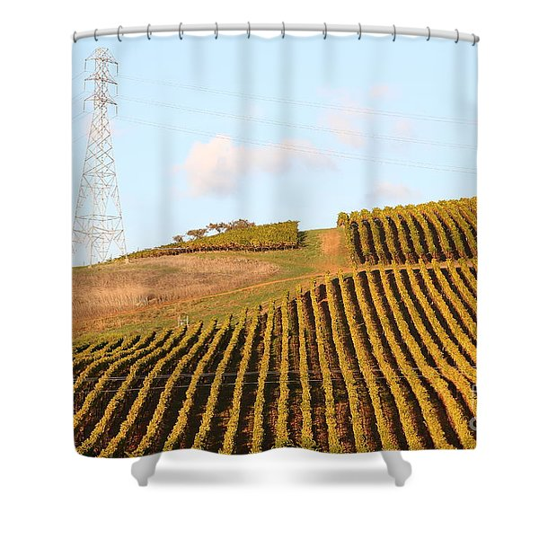 Napa Valley Vineyard . 7D9066 Shower Curtain by Wingsdomain Art and Photography