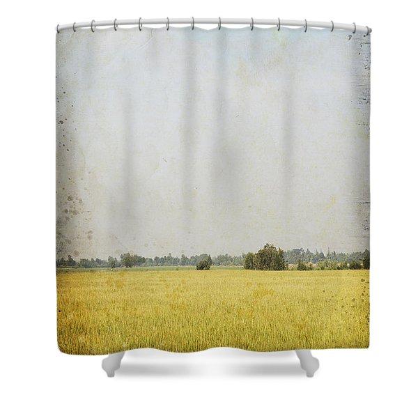nature painting on old grunge paper Shower Curtain by Setsiri Silapasuwanchai