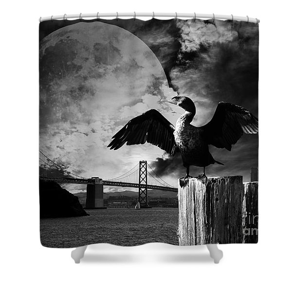 Night of The Cormorant . Black and White Shower Curtain by Wingsdomain Art and Photography