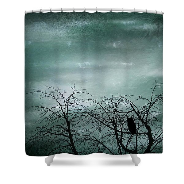 Night Owl Shower Curtain by Nomad Art And  Design