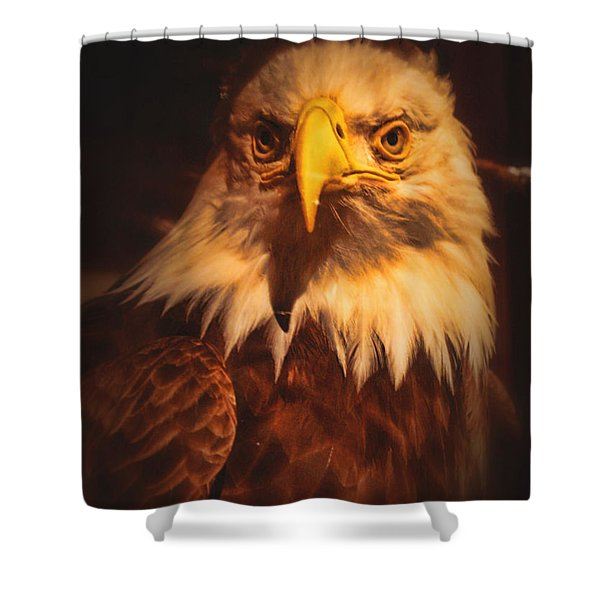 Old Abe Profile Shower Curtain by Tommy Anderson