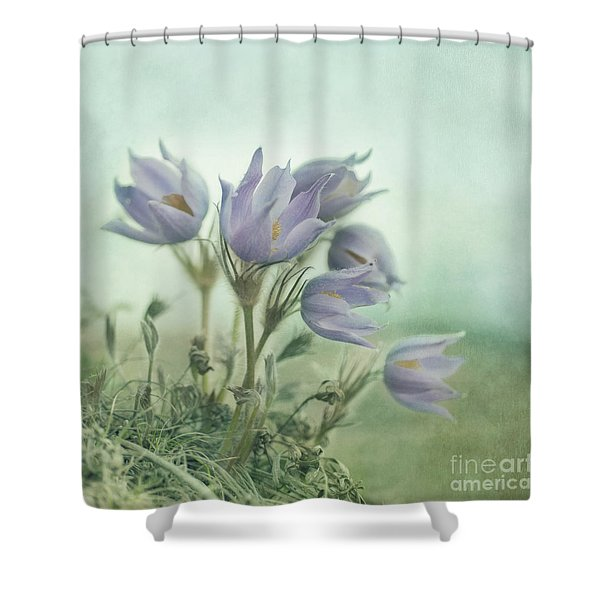 On The Crocus Bluff Shower Curtain by Priska Wettstein