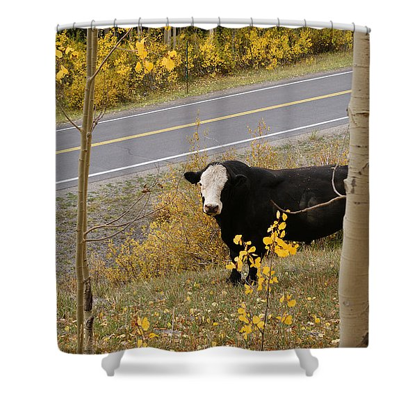 Oooops Wrong Trail Shower Curtain by Ernie Echols