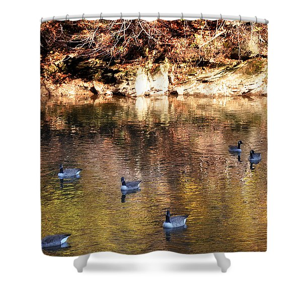 Out for a Swim Shower Curtain by Bill Cannon