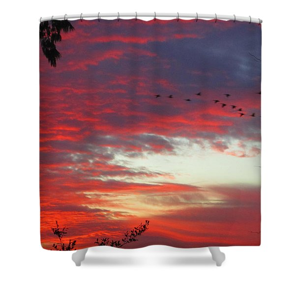 Papaya Colored Sunset With Geese Shower Curtain by Kym Backland
