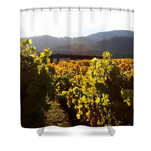 Passage Through The Old Vineyard Shower Curtain by Wingsdomain Art and Photography