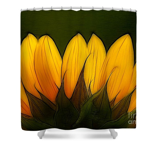 Petales de Soleil - a12 Shower Curtain by Variance Collections