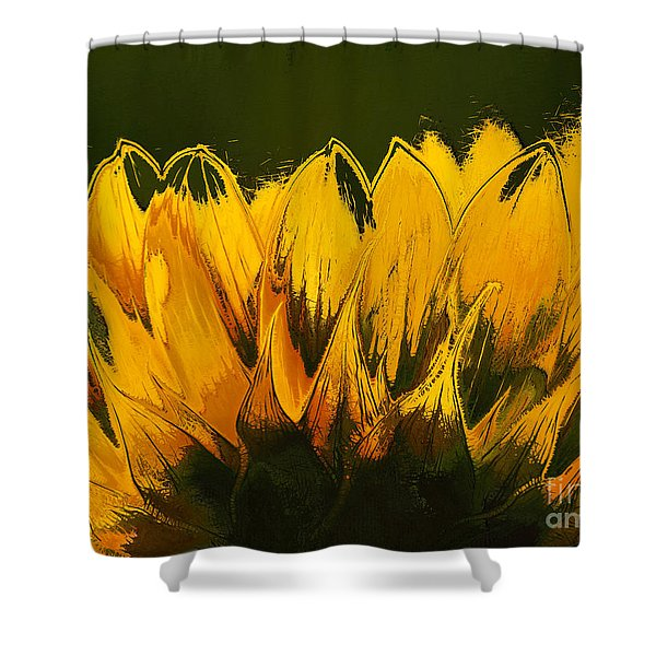 Petales de Soleil - a41b Shower Curtain by Variance Collections