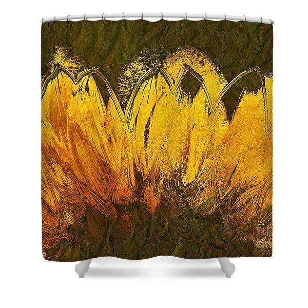 Petales de Soleil - a43t02b Shower Curtain by Variance Collections