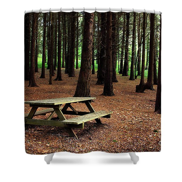 Picnic Table Shower Curtain by Carlos Caetano