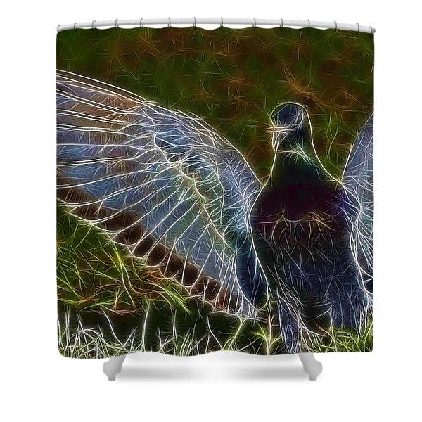 Pigeon Spirit Shower Curtain by Deborah Benoit