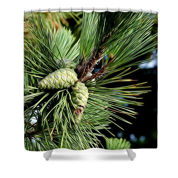 Pine Cones In A Pine Tree Shower Curtain by Bill Cannon