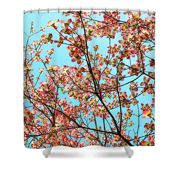 Pink Dogwood Sky Shower Curtain by Debbie Portwood