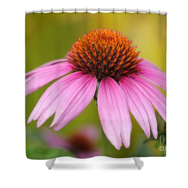 Pink Is In Shower Curtain by Sabrina L Ryan