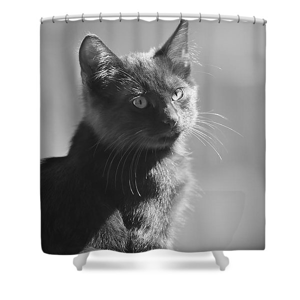 Portrait Of A Kitty Shower Curtain by Kim Henderson